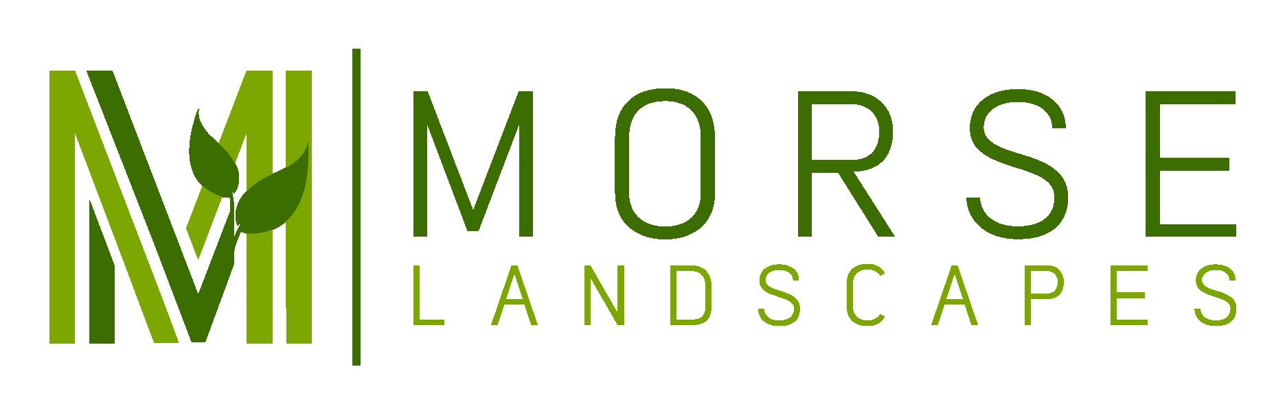 Morse Landscapes